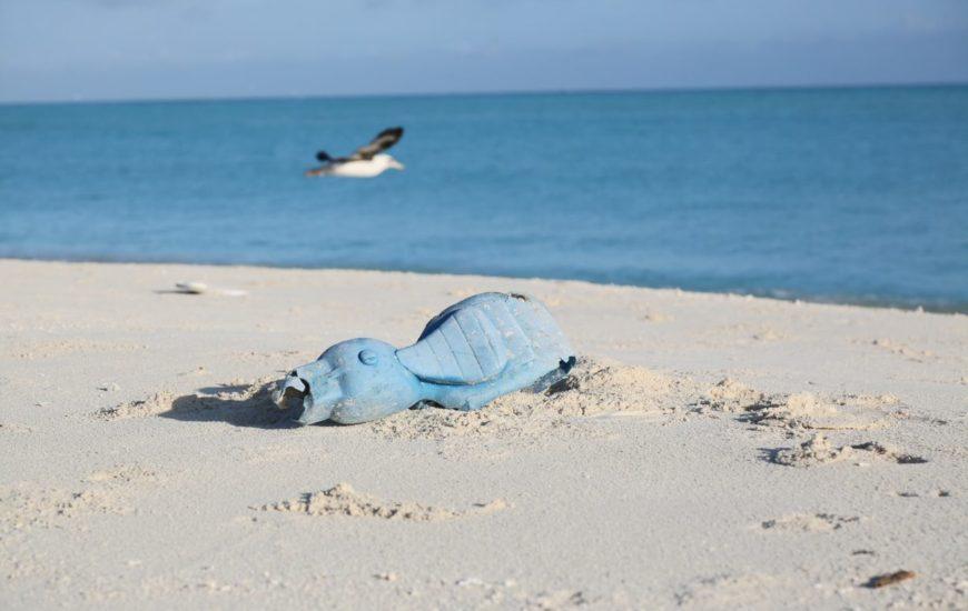Collecte déchets Initiatives Océanes
